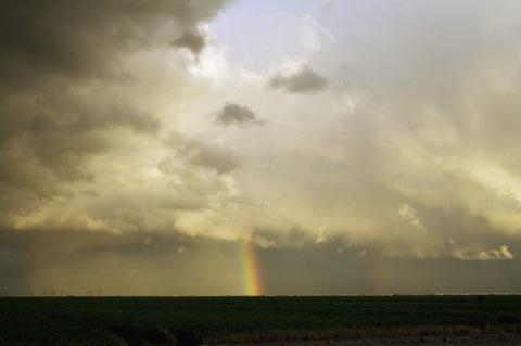 rainbows-800.jpg