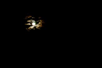 dance-the-night-away.jpg