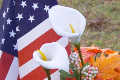 veterans-day-2008